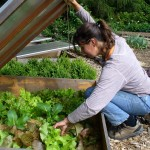 CC Les jardiniers du Possible