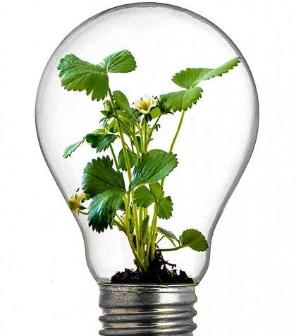 L'innovation Et Le Regard Panoramique